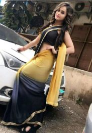 Delhi Escort Service All Star Hoel-8076052719